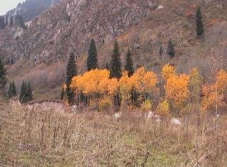 В горах царствует осень
